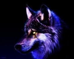emmawolf3