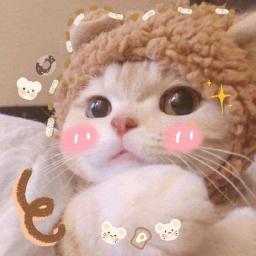 meowww