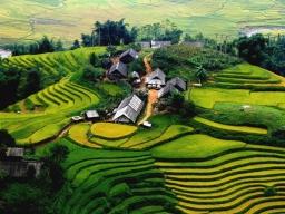 phamthuan